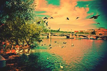 Flying Prague by CasheeFoo
