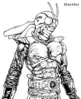 Kamen Rider - Skyrider by Uky0