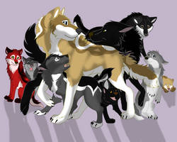 Descry's Pack  by Gerundive