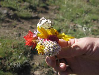 Mini Bouquet by darkprinsess