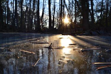 Winter Sun by olivia808