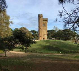 Leith Hill Tower by ancoben