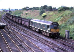 Empty Iron Ore Train by lampwortroy