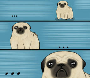 Pug Stare by Amateuritis