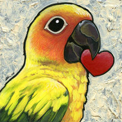 Sun Conure with Heart by ursulav