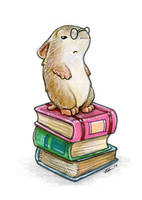 Librarian Hamster by ursulav