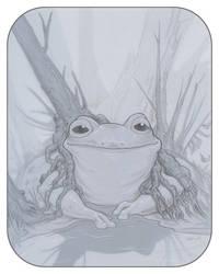 Frogpond by ursulav