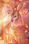Random Hare by ursulav