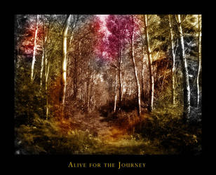 Alive for the Journey by sihaya