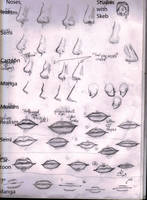 Noses and Mouths: Style reference by Skebryna