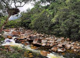 Mossman Gorge II by Aztil