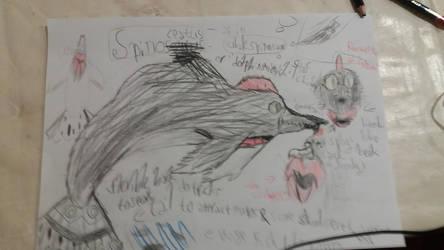 Spinofalsacetesaurus by fandomedragon25