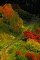 Trains Tracks by Jazzhead