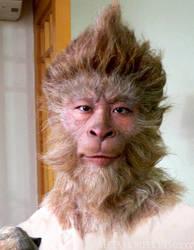Monkey King 2007 by MetaMakeUp