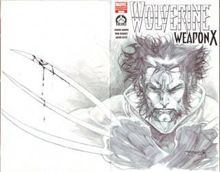 Wolverine 100 sketch cover by sjsegovia