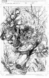 Wolverine vs Hulk by sjsegovia