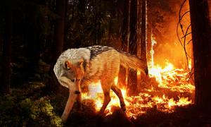 Luthar: My Soul's on Fire by DarkBeforeDawn23