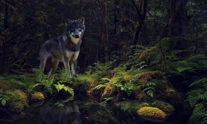 Icarus: In the woods by DarkBeforeDawn23