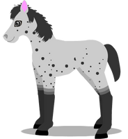 horse foal A by PurpleRat-YS