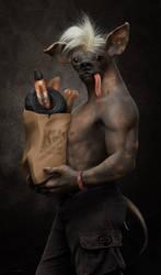 The Dog Man by damir-g-martin
