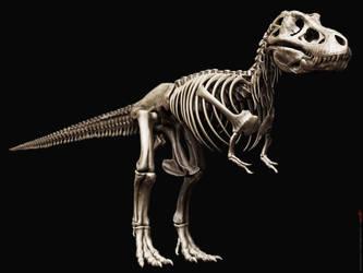 Tyrannosaurus Rex Skeleton by damir-g-martin