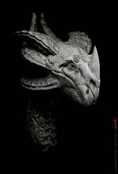 Dragon design 1 by damir-g-martin