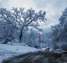 Snowscape by damir-g-martin