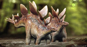 Stegosaurus couple by damir-g-martin