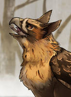 Bird Of Prey by Lemon-Deer