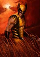 Wolverine by PierluigiAbbondanza