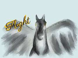 [flight] Portrait  by mssmrphs