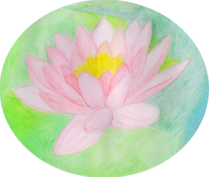 Water lily watercolour by Wyverntales