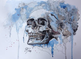 Skull by jeroy94