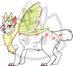 Mothcat ID #1163 by Mothchive