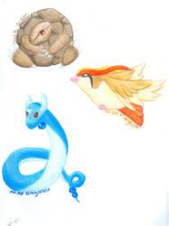 Pokemon Project - 3 by RangerLenara