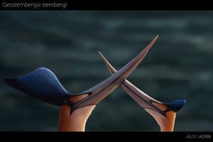 Courtship by Julio-Lacerda