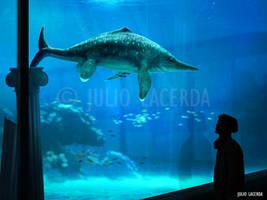 The Aquarium #14 by Julio-Lacerda