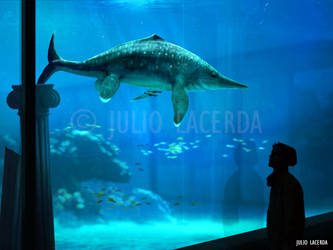 The Aquarium #14 by Julio-Lacerda