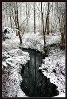 Winter's almost gone by LiveLongAndProsper