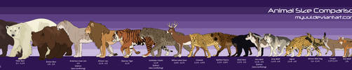 Animal Size Comparison Chart by Myuui