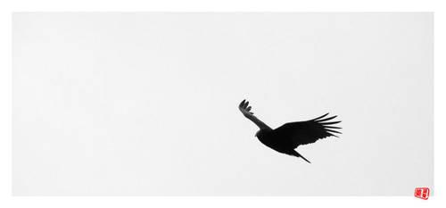 Flight at Castle Rock by Blufire