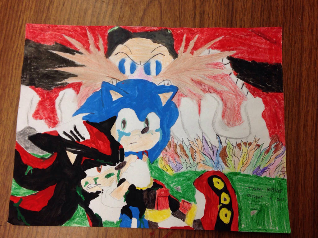 Sonic And Shadow The Hedgehog Fan Art By Shadow45790 On Deviantart