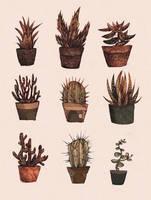 plant by viowl