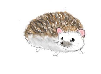 Hedgehog 2 by snowdrago