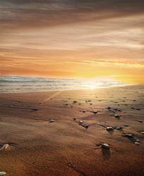 Beach sunset premade background by KalosysArt