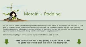 How to: Margin + Padding by ginkgografix