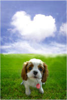 Puppy Love by Felissauria