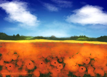 05 Poppy Field by KaanaMoonshadow