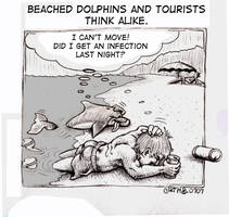 Dolphins and Tourists by sethness