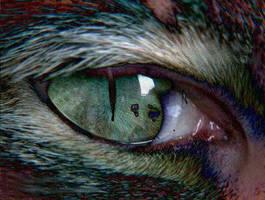 Werewolf by wickedsweetmike